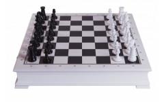Шахматы Сенеж